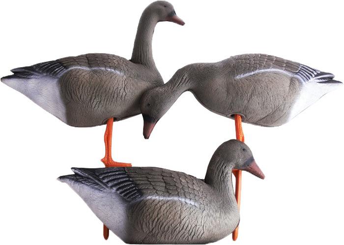 Чучело Birdland
