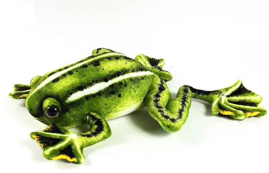 АБВГДЕЙКА Мягкая игрушка Лягушка древесная, 50 см, зеленый