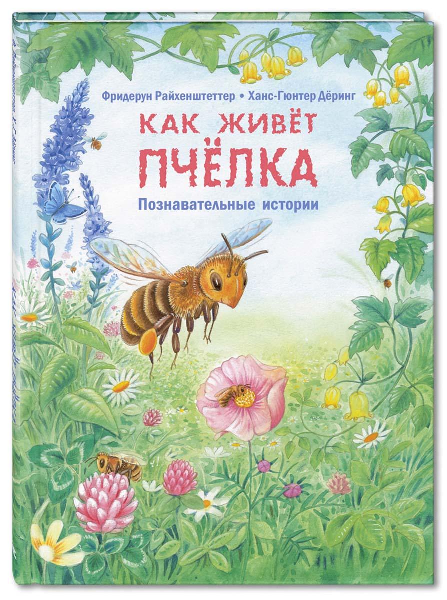 Фридерун Райхенштеттер Как живет пчелка. Познавательные истории