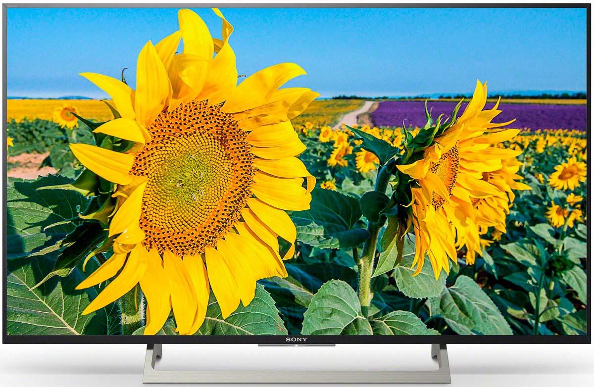 Телевизор Sony KD-43XF8096BR 43, черный цена
