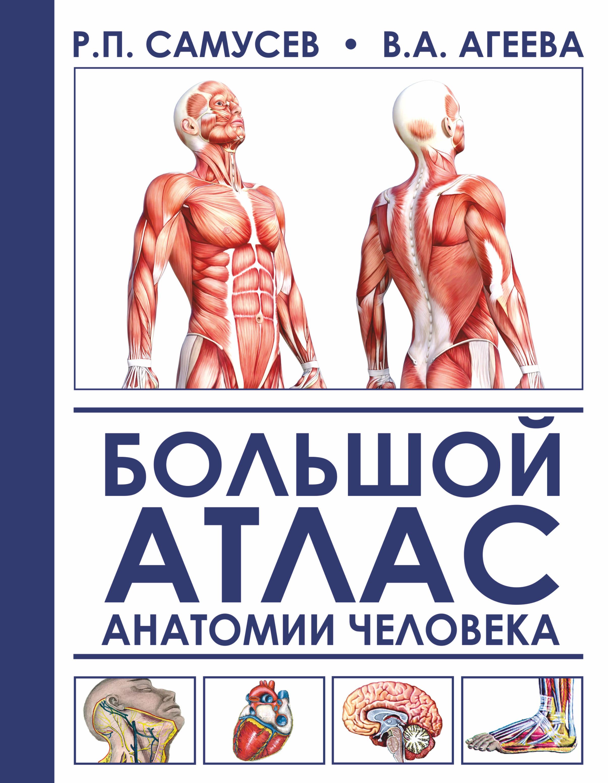 Р. П. Самусев,В. А. Агеева Большой атлас анатомии человека
