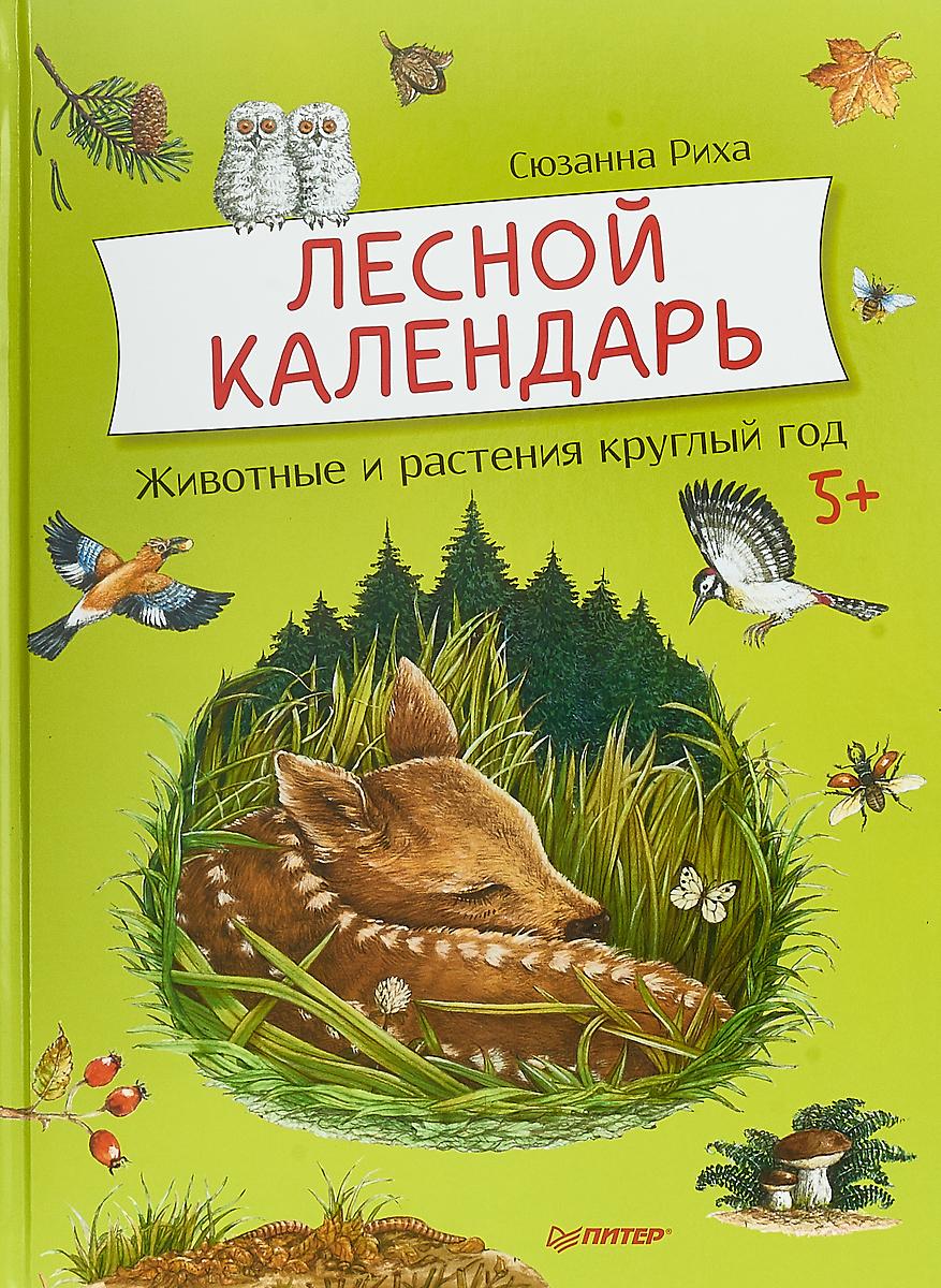 Сюзанна Риха Лесной календарь. Животные и растения круглый год