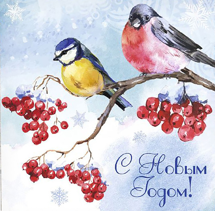 Снегирь на открытке