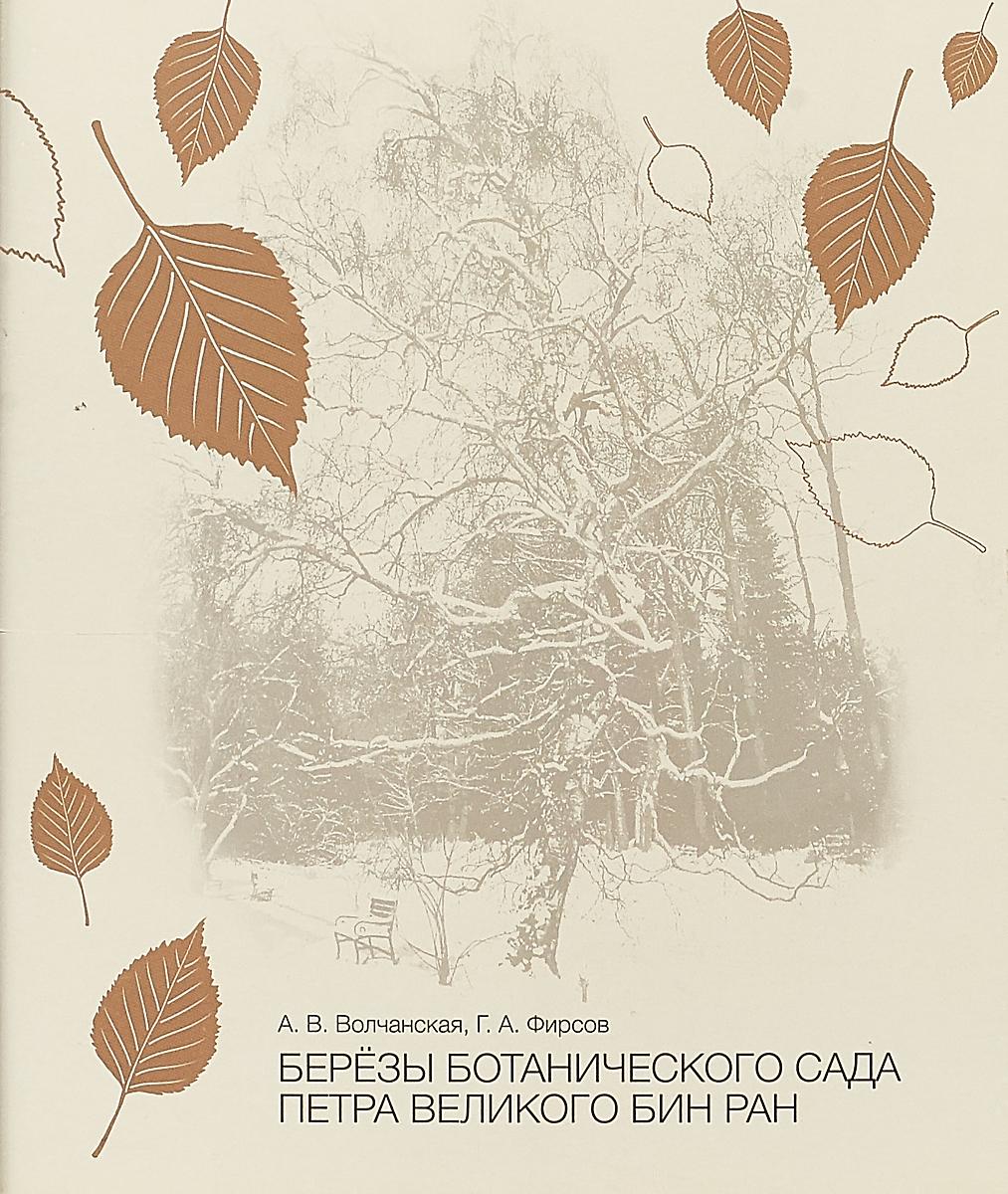 А. В. Волчанская Березы Ботанического сада Петра Великого. БИН РАН