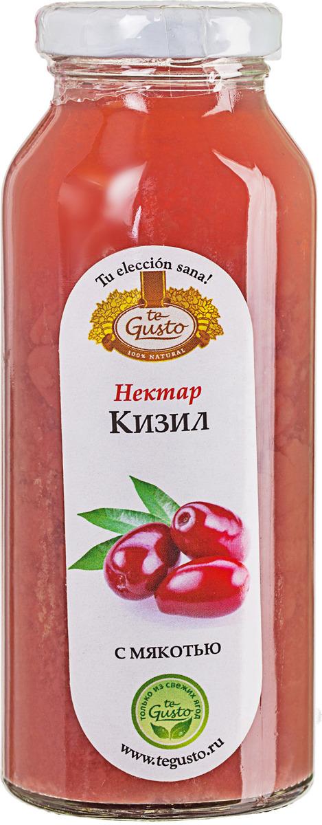 Кизиловый нектар с мякотью te Gusto, 0,25 л