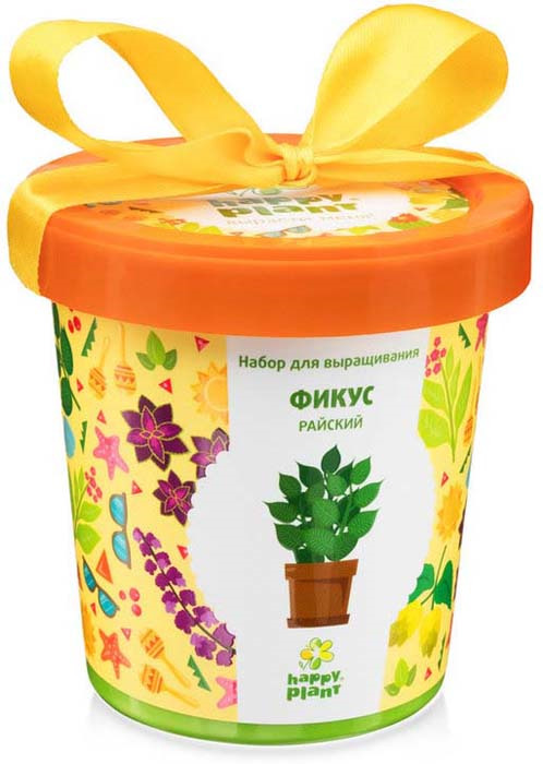 Набор для опытов и экспериментов Happy Plant Горшок. Фикус райский растение фикус эластика мелани д 12