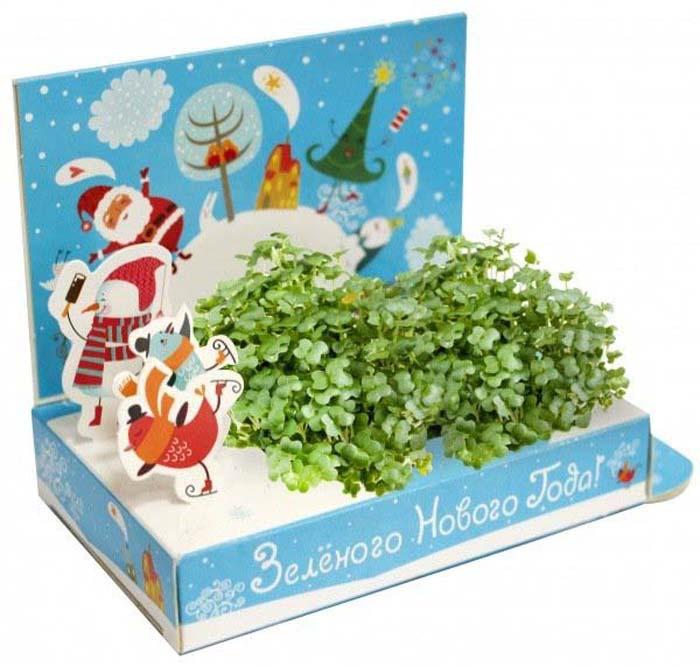 Набор для опытов и экспериментов Happy Plant Зеленого Нового года набор подарочный для выращивания happy plants живая открытка лето в кармане