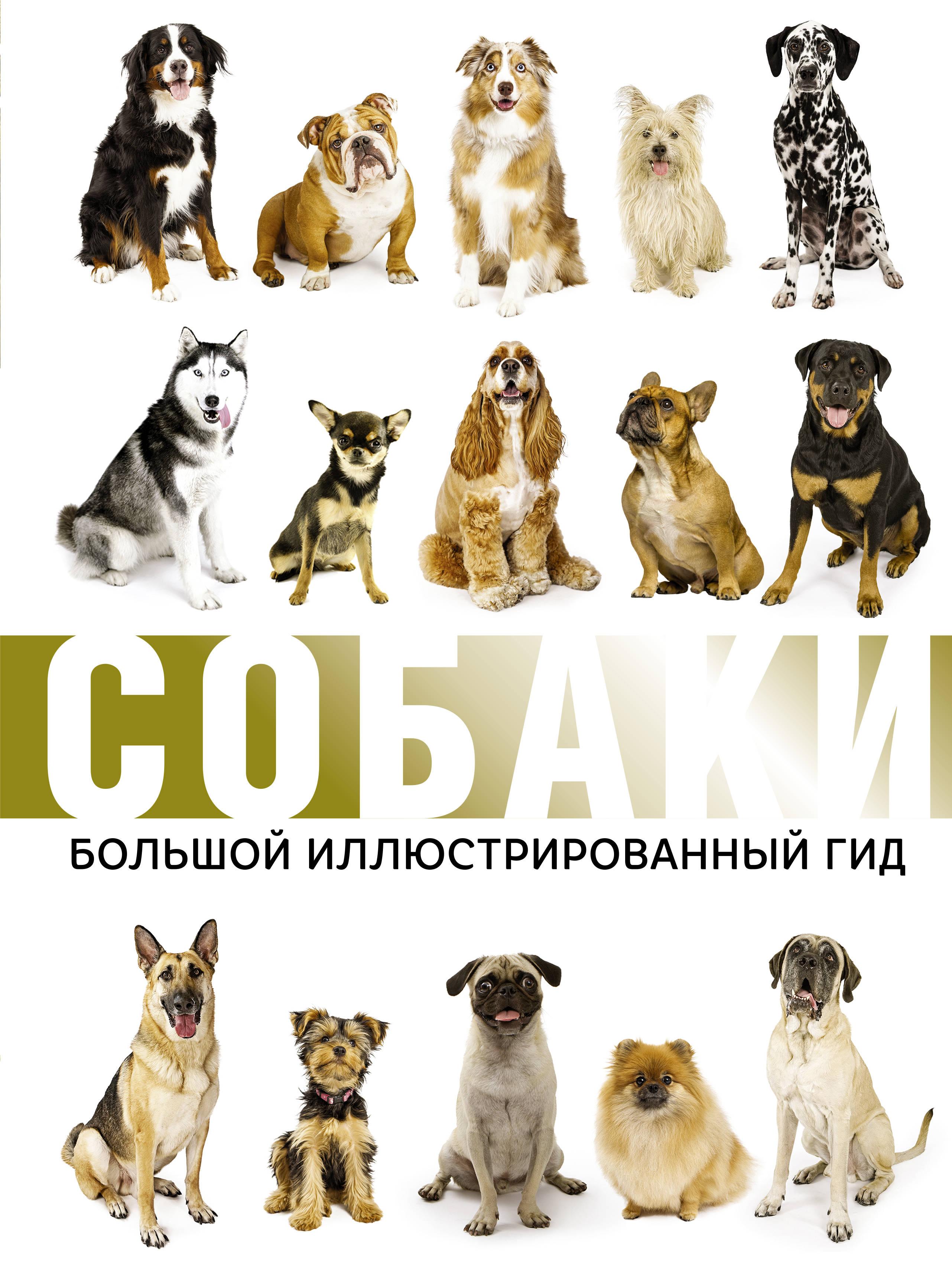 Л. Д. Вайткене, М. Д. Филиппова, И. Г. Барановская Собаки. Большой иллюстрированный гид