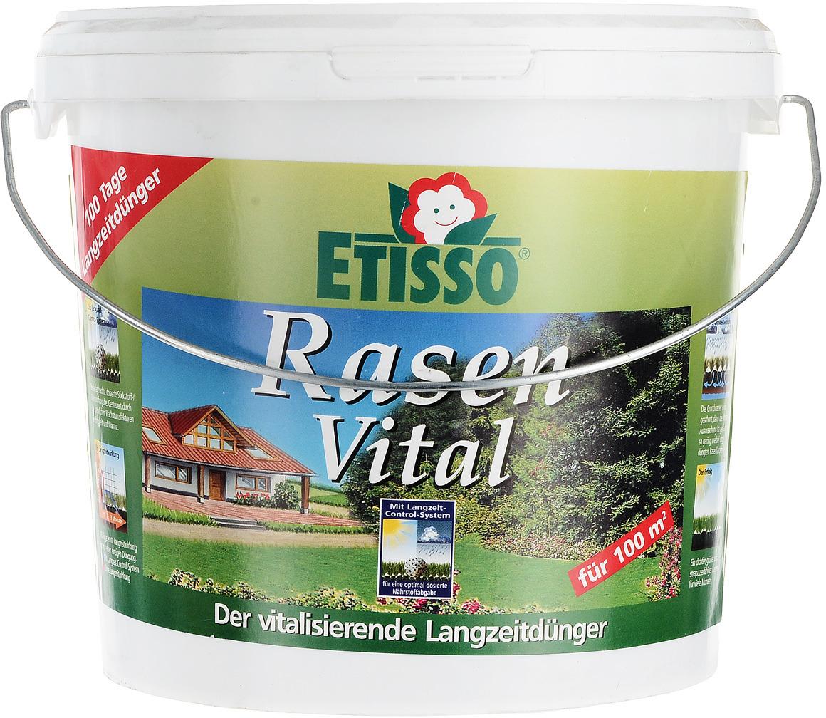 Живительное долгосрочное удобрение Etisso, для здорового роста газонной травы, 3 кг удобрение для газона compo 2 кг