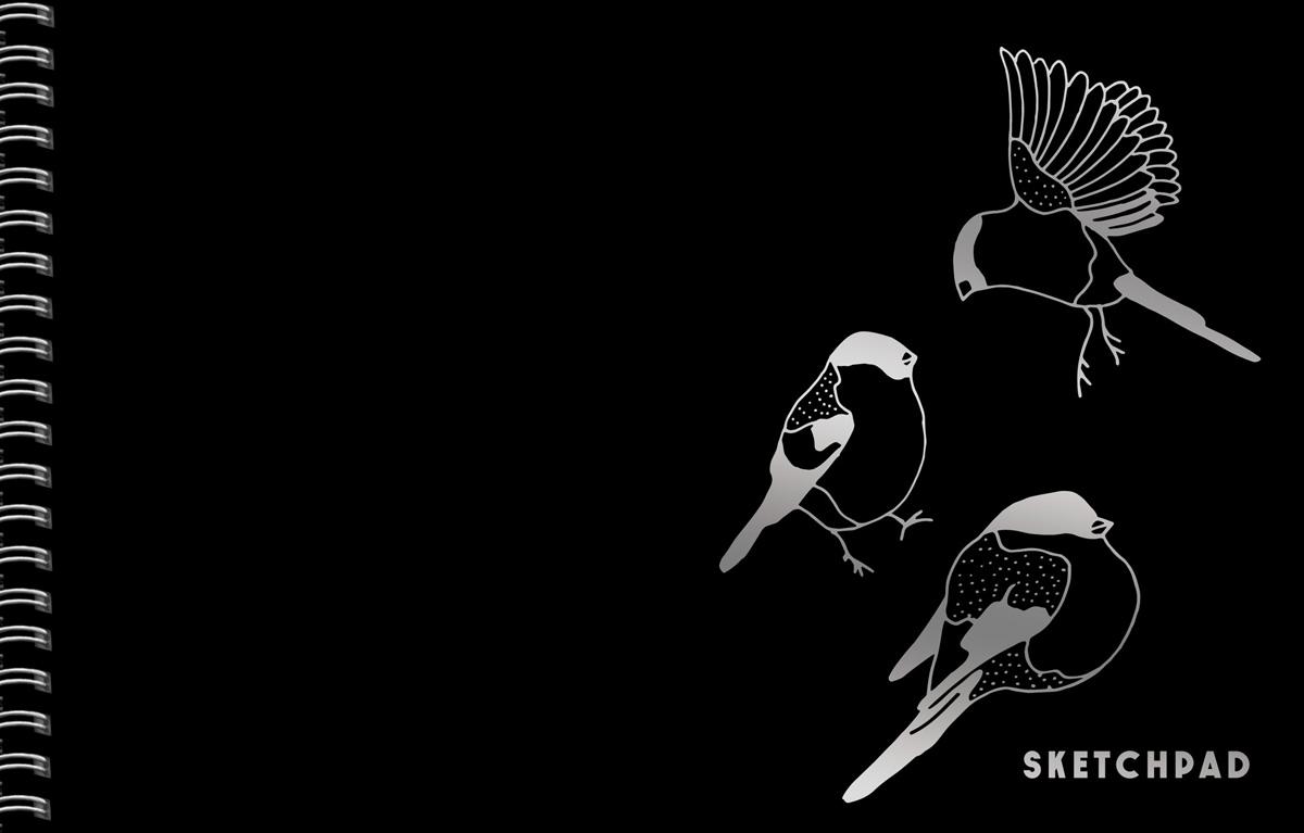 """Скетчбук Listoff """"Птичьи трели"""", 20 листов, 24,6 x 16,7 см"""