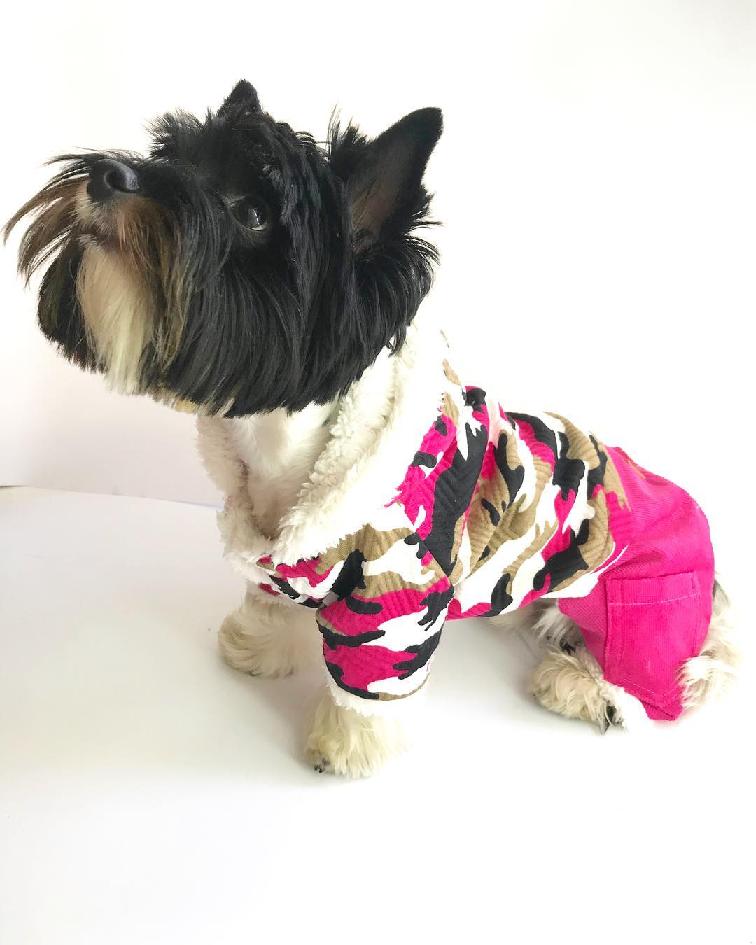 Одежда для собак Arnydog.ru Комбинезон Милитари розовый ST-16905_8