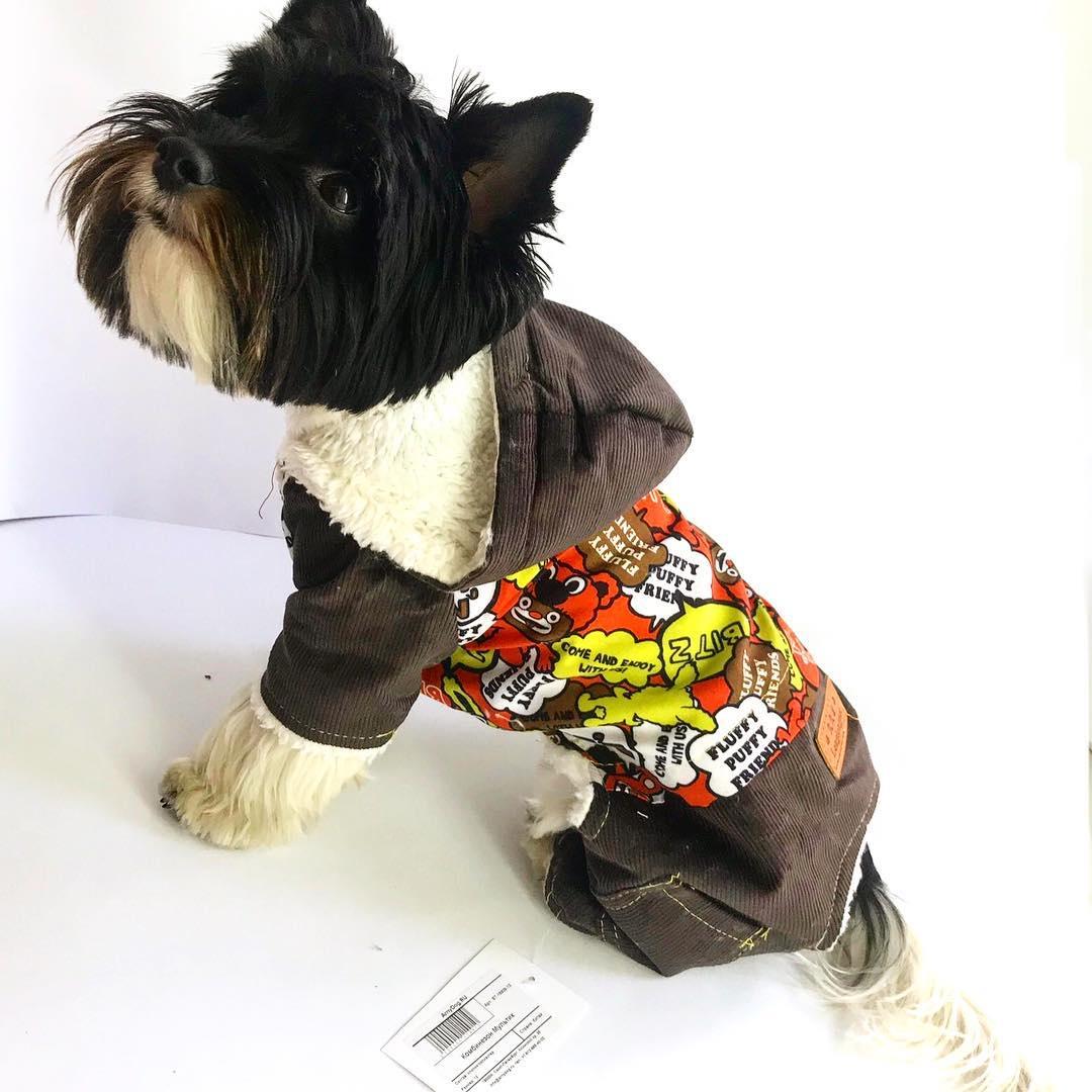 Фото - Демисезонный комбинезон для собак Arnydog.ru Мультик, коричневый 16 (35 cм) trixie стойка с мисками trixie для собак 2х1 8 л