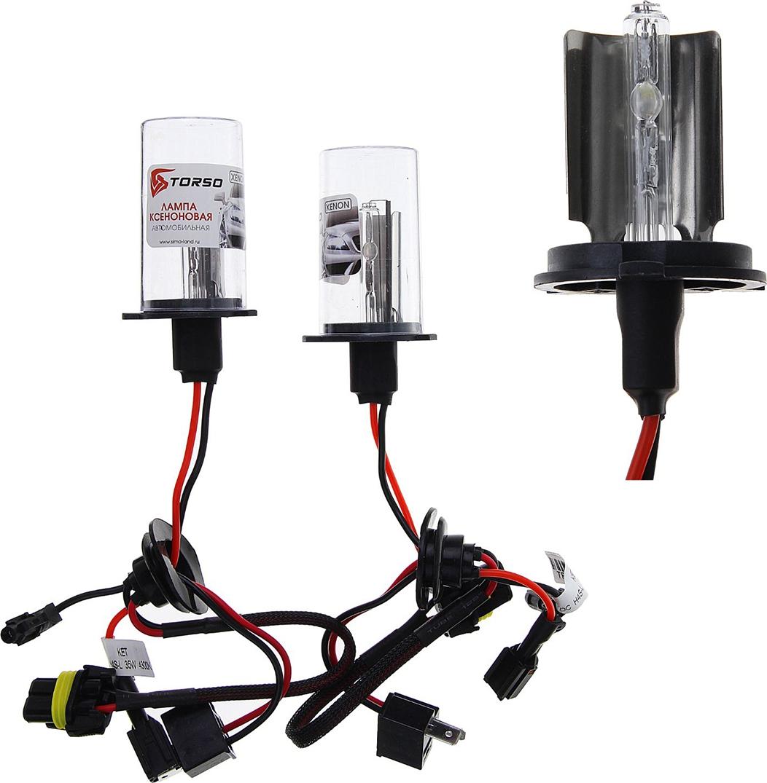 Комплект ксеноновых ламп Torso H4S-L, для блоков DC, 12 В, 4300 К, 2 шт. 1059427