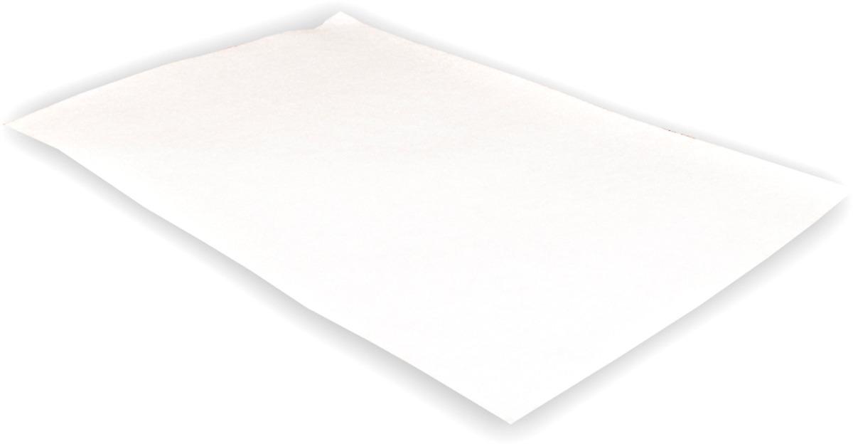 купить Микрофильтр для пылесоса Filtero FTM 01, 300 х 200 мм по цене 152 рублей