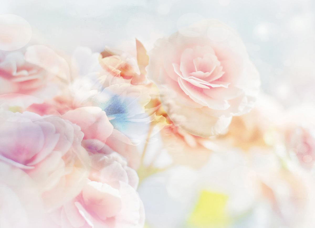 Фотообои Postermarket Романтические цветы, 254 x 184 см фотообои флизелиновые московская обойная фабрика озеро в горах 200 х 270 см