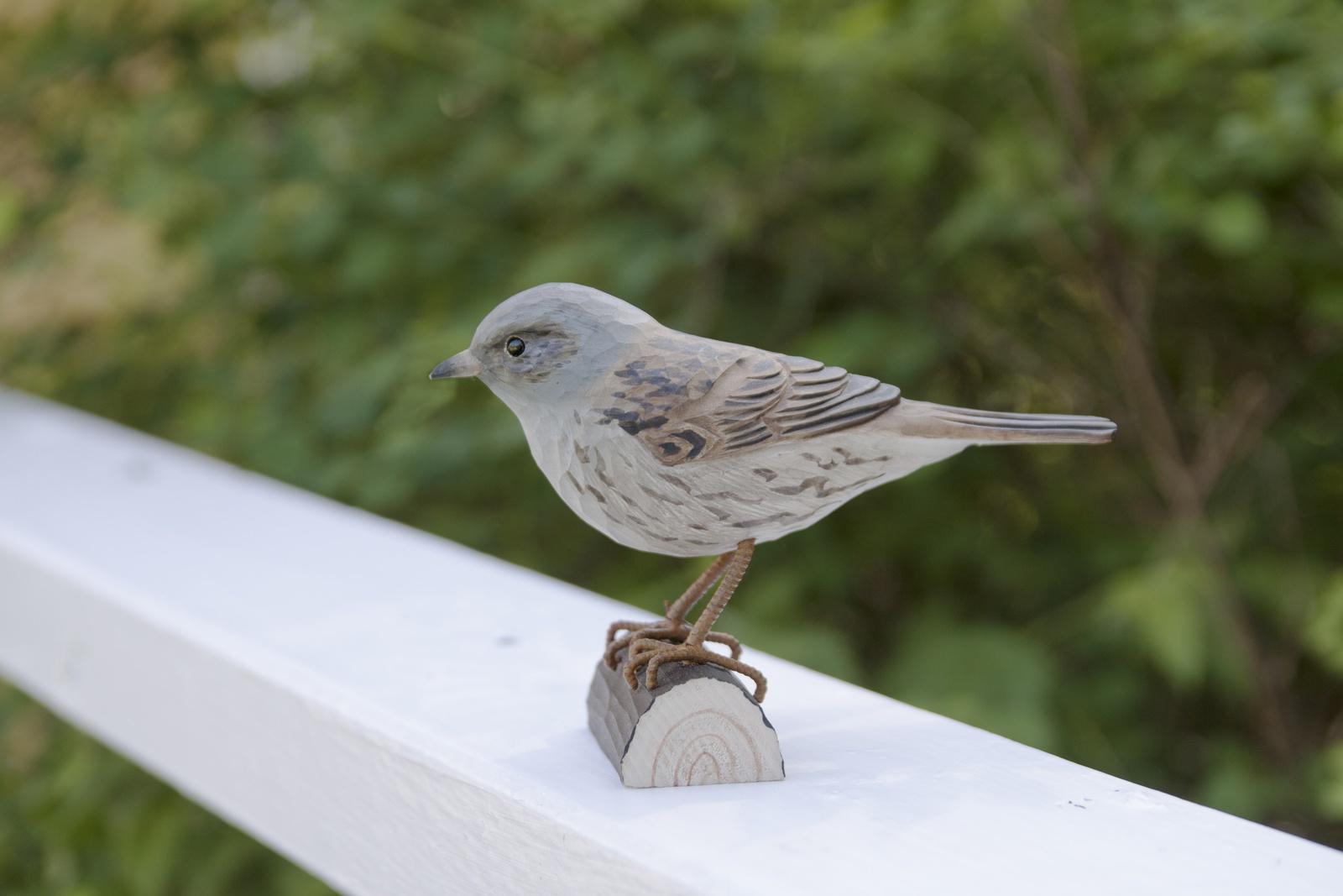 Фигурка декоративная Wildlife Garden Dunnock, WG427, ручная работаWG427Материал: дерево (липа). Все использованные материалы экологичны, не содержат вредных веществ и безопасны для птиц. Размер: высота 9 см, ширина 5 см, длина 13 см. Цвет: мультиколор. Вырезана и раскрашена вручную, упакована в подарочную упаковку и включает брошюру с информацией о птице.