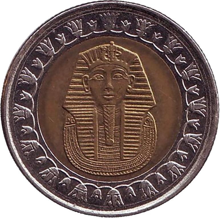 этой связи египет фунт фото этого они часто