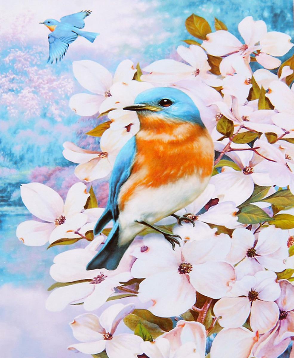 Картина по номерам Школа талантов Птички в цветах, 2467734, 30 х 40 см картина по номерам школа талантов зимний дом 1675811 30 х 40 см
