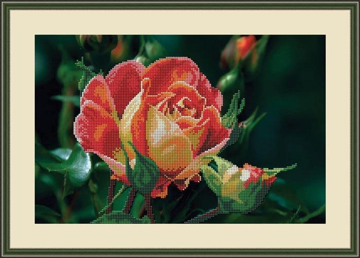 Набор для вышивания Galla Collection бисером «Чайная роза», 37x24 см светлица набор для вышивания бисером архангел михаил бисер чехия 1042701