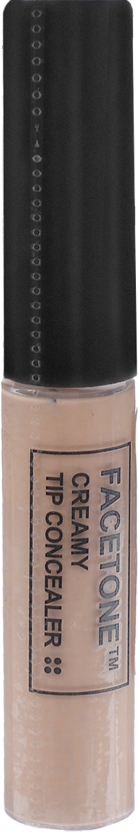 Консилер Tony Moly Facetone Creamy Tip Concealer P01, 6 г