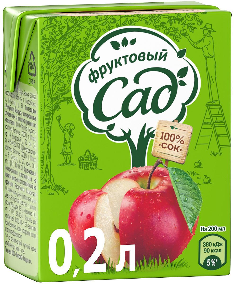 Фруктовый Сад Яблоко сок с мякотью, 0,2 л