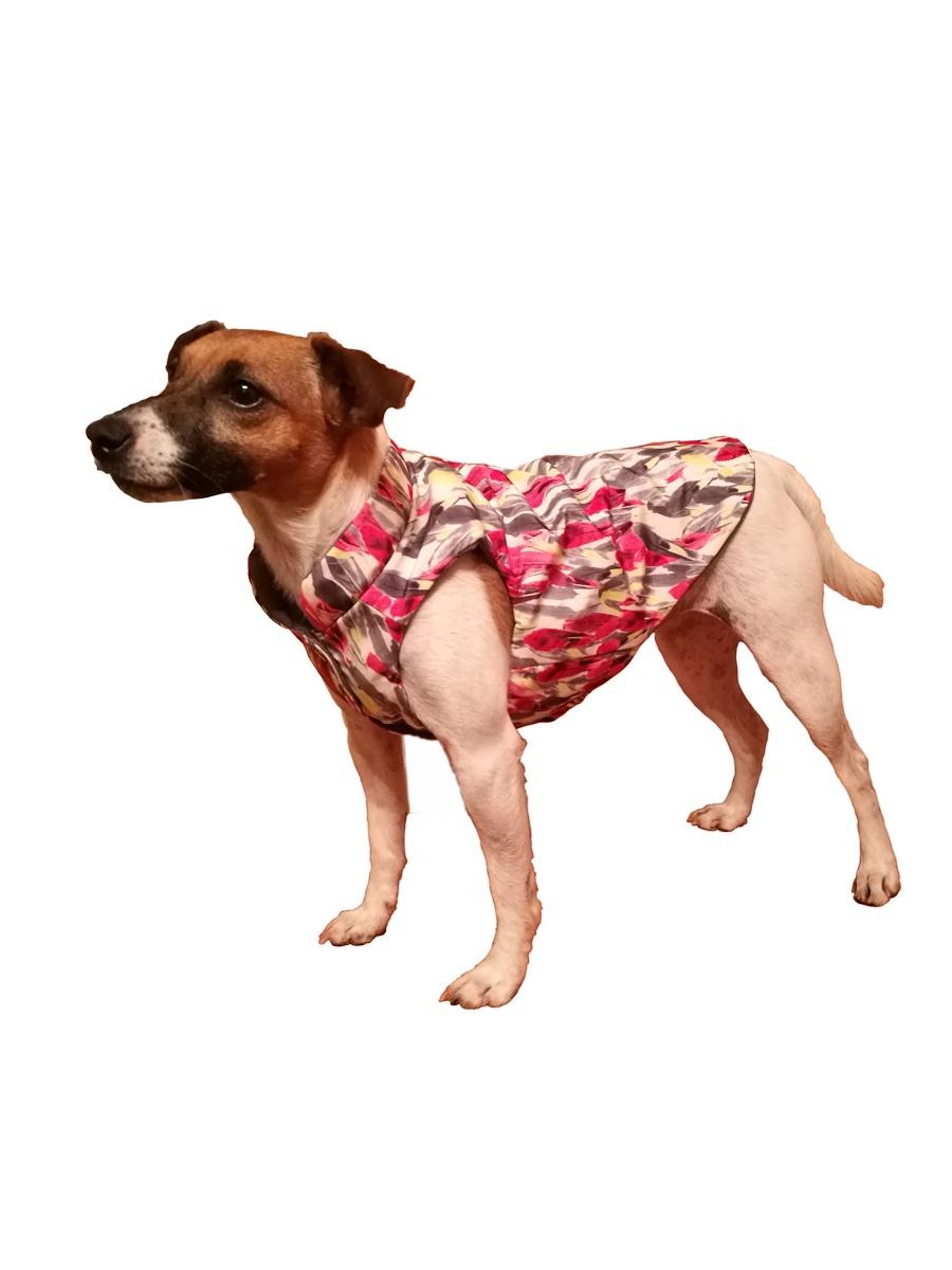 Одежда для собак JOY Жилет (двухсторонний) с утеплителем для собак, серый, красный, белый