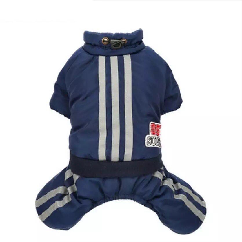 Одежда для собак Arnydog.ru Комбинезон Спорт синий 3303196032_xl