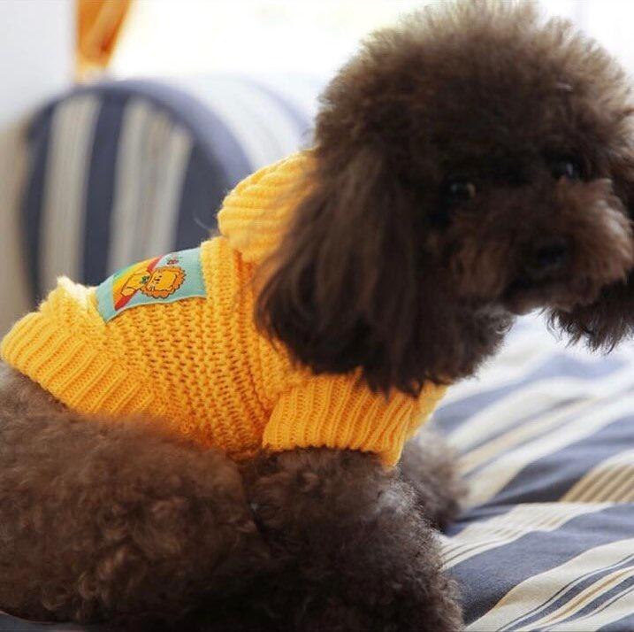Одежда для собак Arnydog.ru Свитер Желтый 3303196892_md