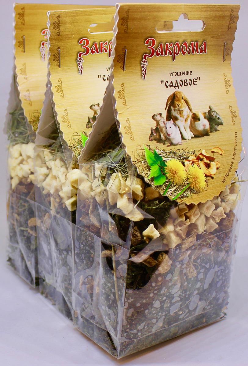 Лакомство Закрома Садовое для грызунов, 4620770270289, 3 шт по 50 г лакомство для грызунов закрома веточки яблони и березы 100 г