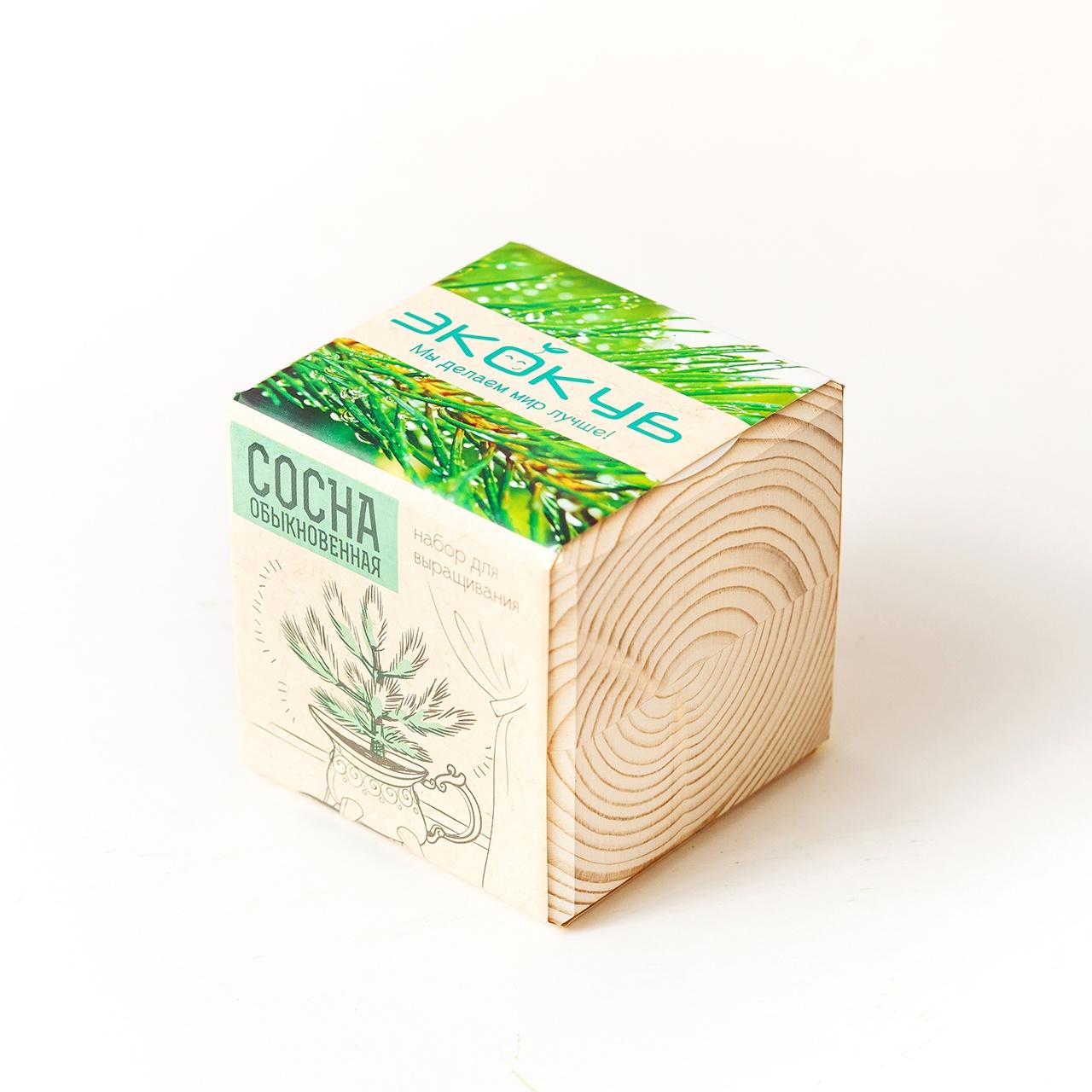 Набор для выращивания Экокуб Сосна набор для опытов и экспериментов набор для выращивания экокуб базилик