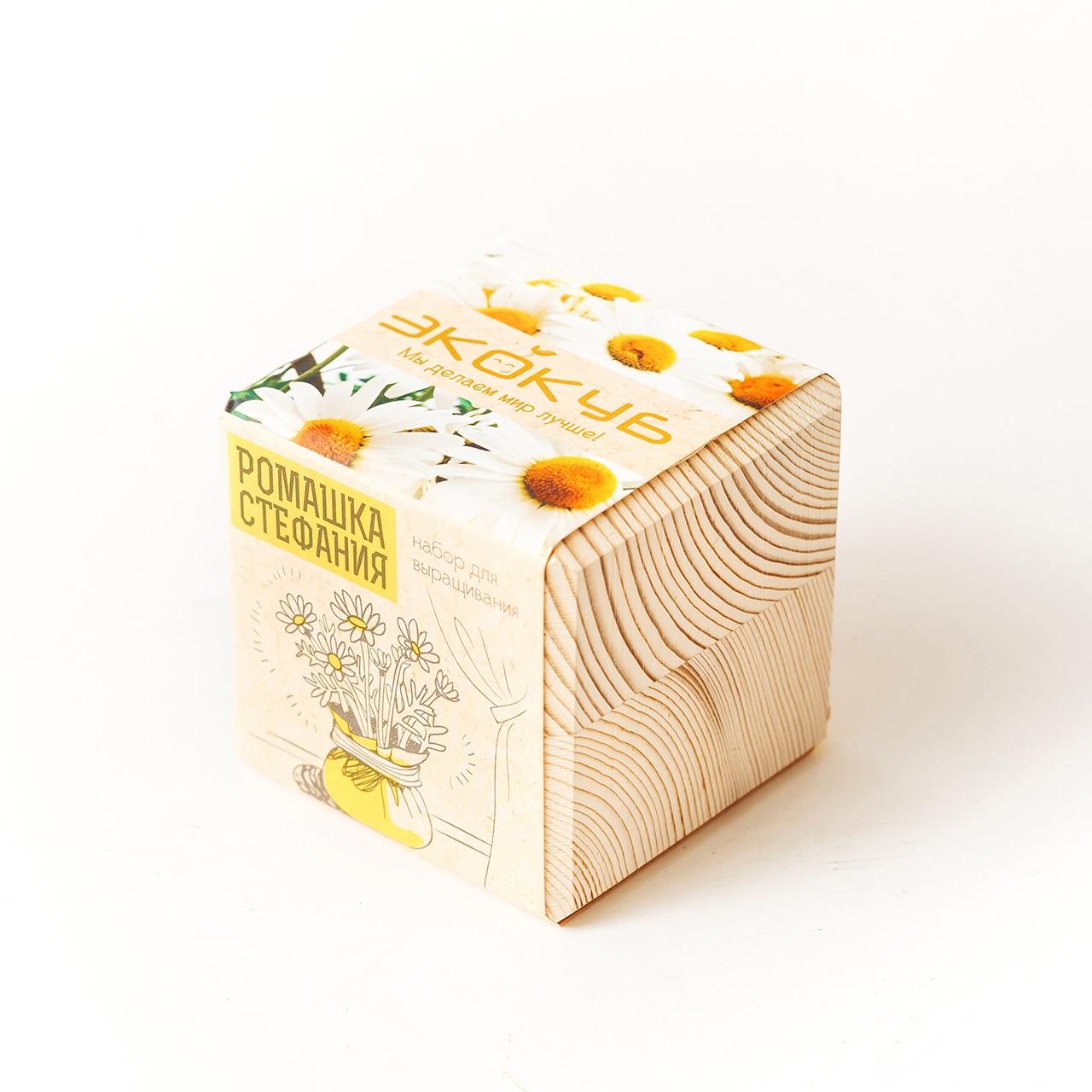 Набор для выращивания Экокуб Ромашка Стефания набор для опытов и экспериментов набор для выращивания экокуб базилик