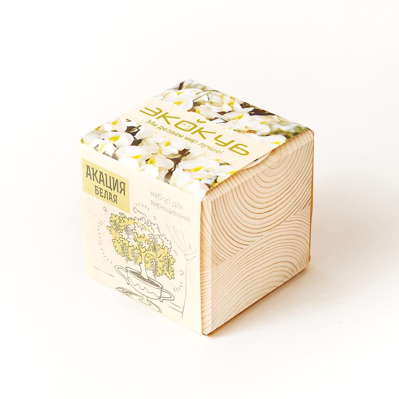 Набор для выращивания Экокуб Акация белая набор для опытов и экспериментов набор для выращивания экокуб базилик
