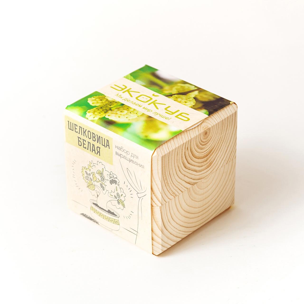 Набор для выращивания Экокуб Шелковица Белая набор для опытов и экспериментов набор для выращивания экокуб базилик