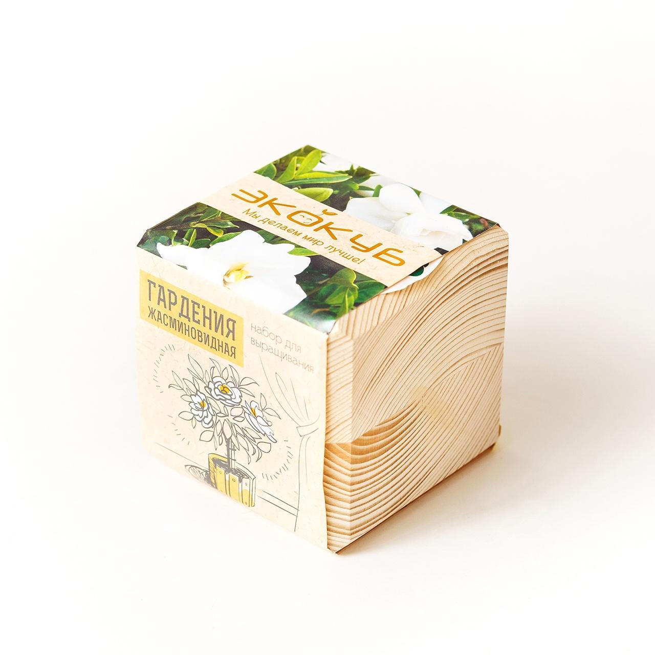 Набор для выращивания Экокуб Гардения жасминовидная набор для опытов и экспериментов набор для выращивания экокуб базилик