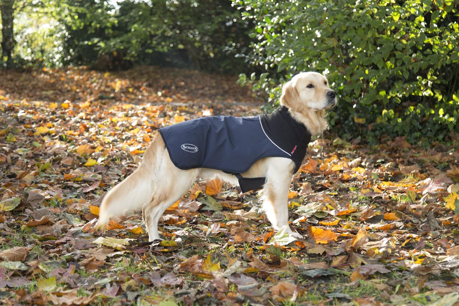 Одежда для собак SCRUFFS Thermal Попона согревающая 936082, 36см, темно-синий одежда для собак ютакс
