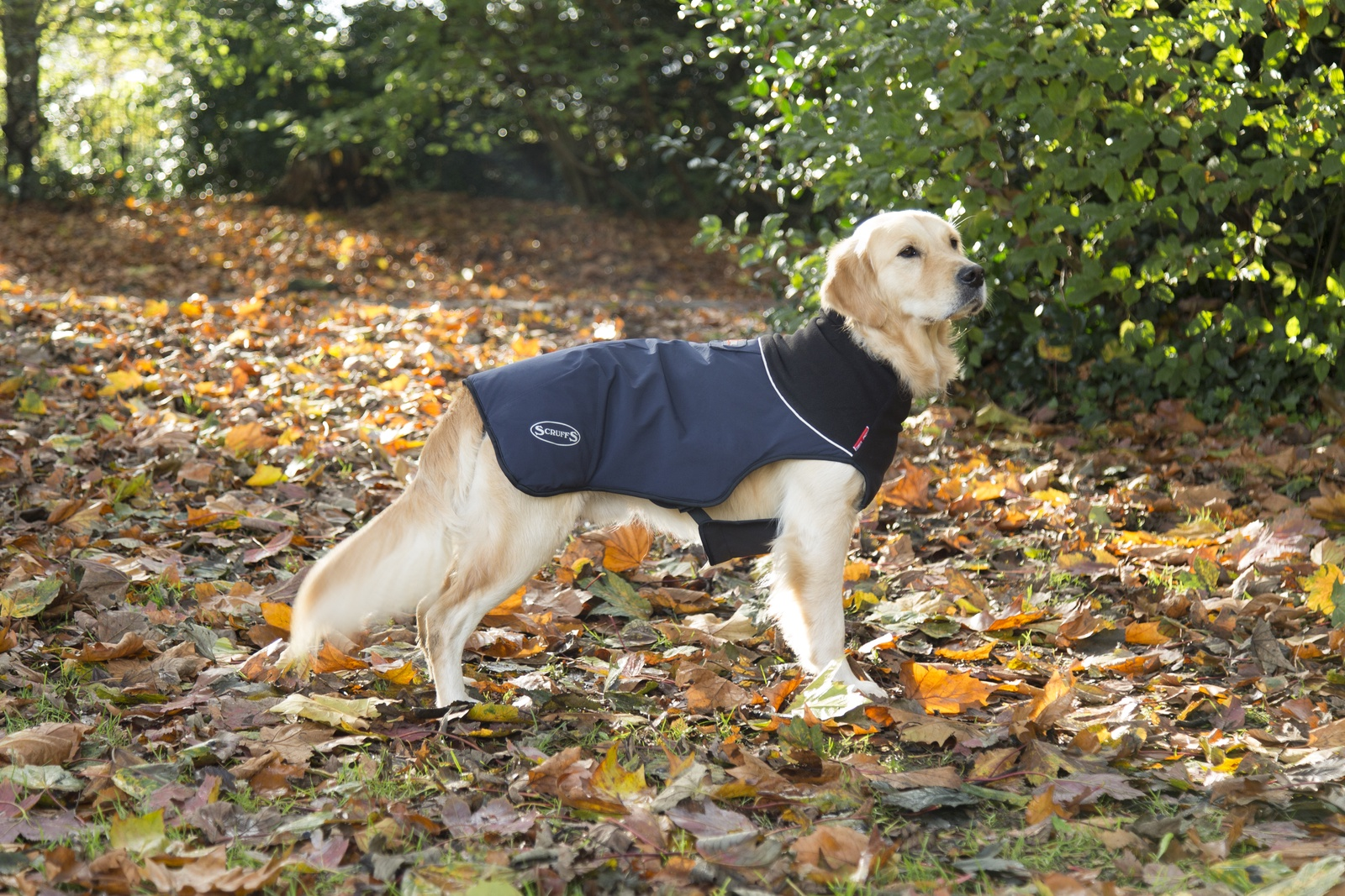 Одежда для собак SCRUFFS Thermal попона согревающая 936136, 60см, темно-синий одежда для собак ютакс