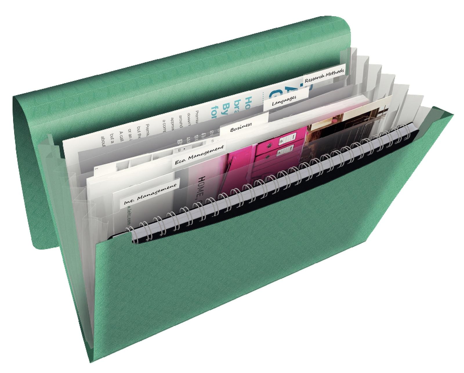 Папка для проектов Esselte Colour'Ice, 626253, зеленый berlingo бумага для заметок c клеевым краем 7 6 х 7 6 см цвет зеленый 100 листов