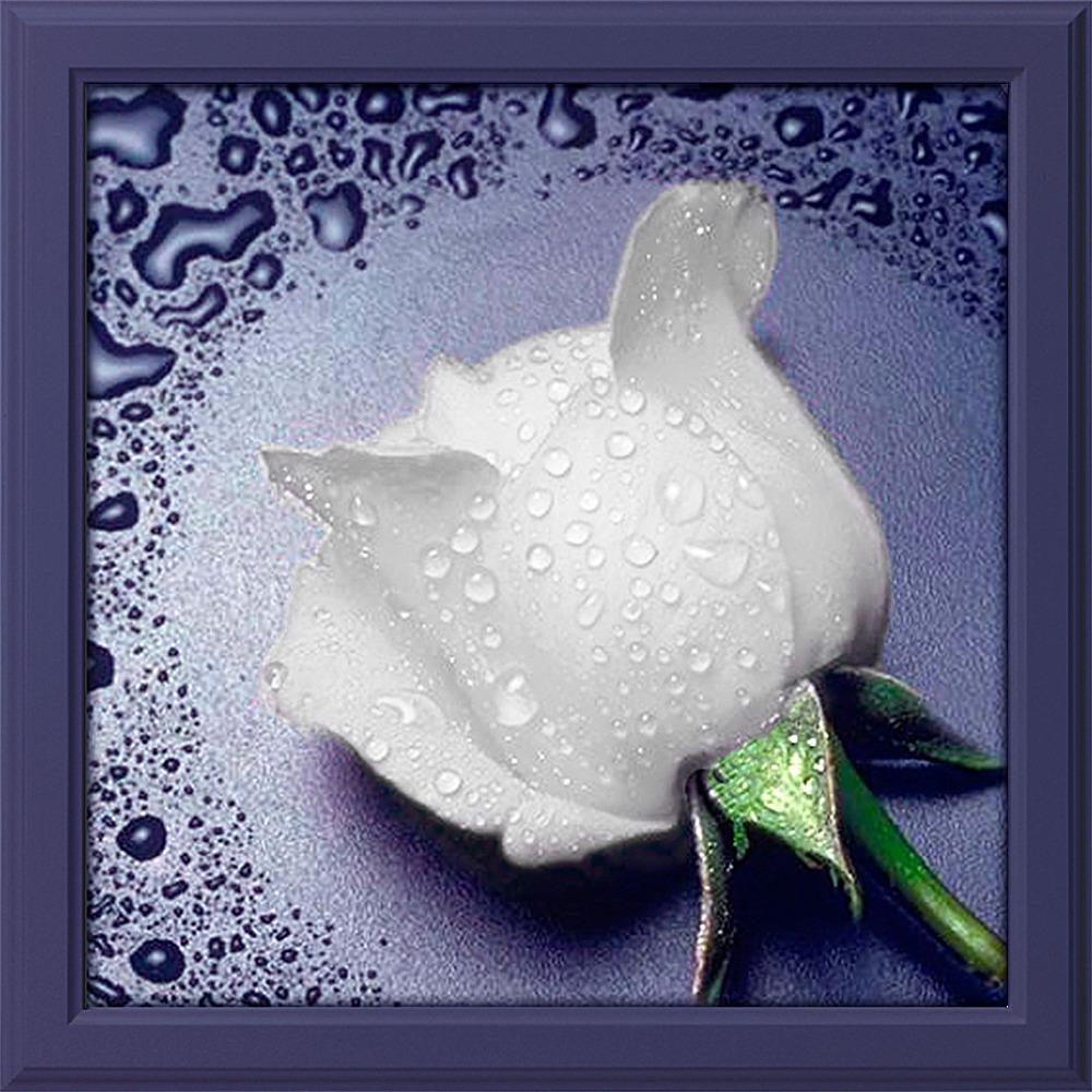 "Картина стразами Алмазная Живопись ""Белая роза"" (АЖ-24), 16 цветов, 22х24 см"