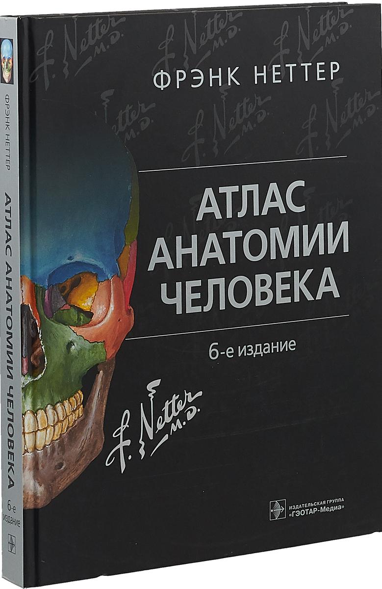 Фрэнк Неттер Атлас анатомии человека атлас нормальной анатомии человека