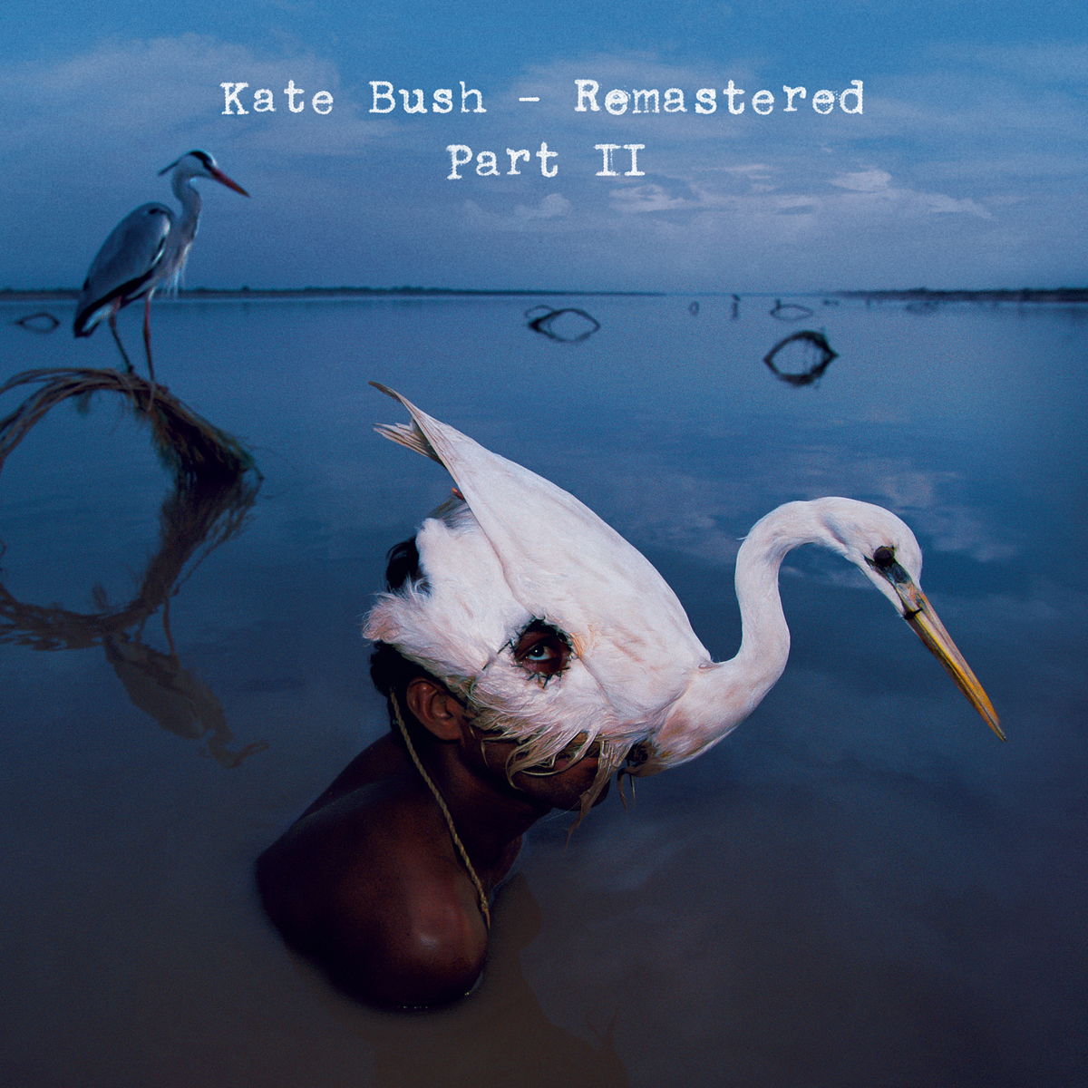 Фото - Кейт Буш Kate Bush. Remastered. Part II (11 CD) cd led zeppelin ii deluxe edition