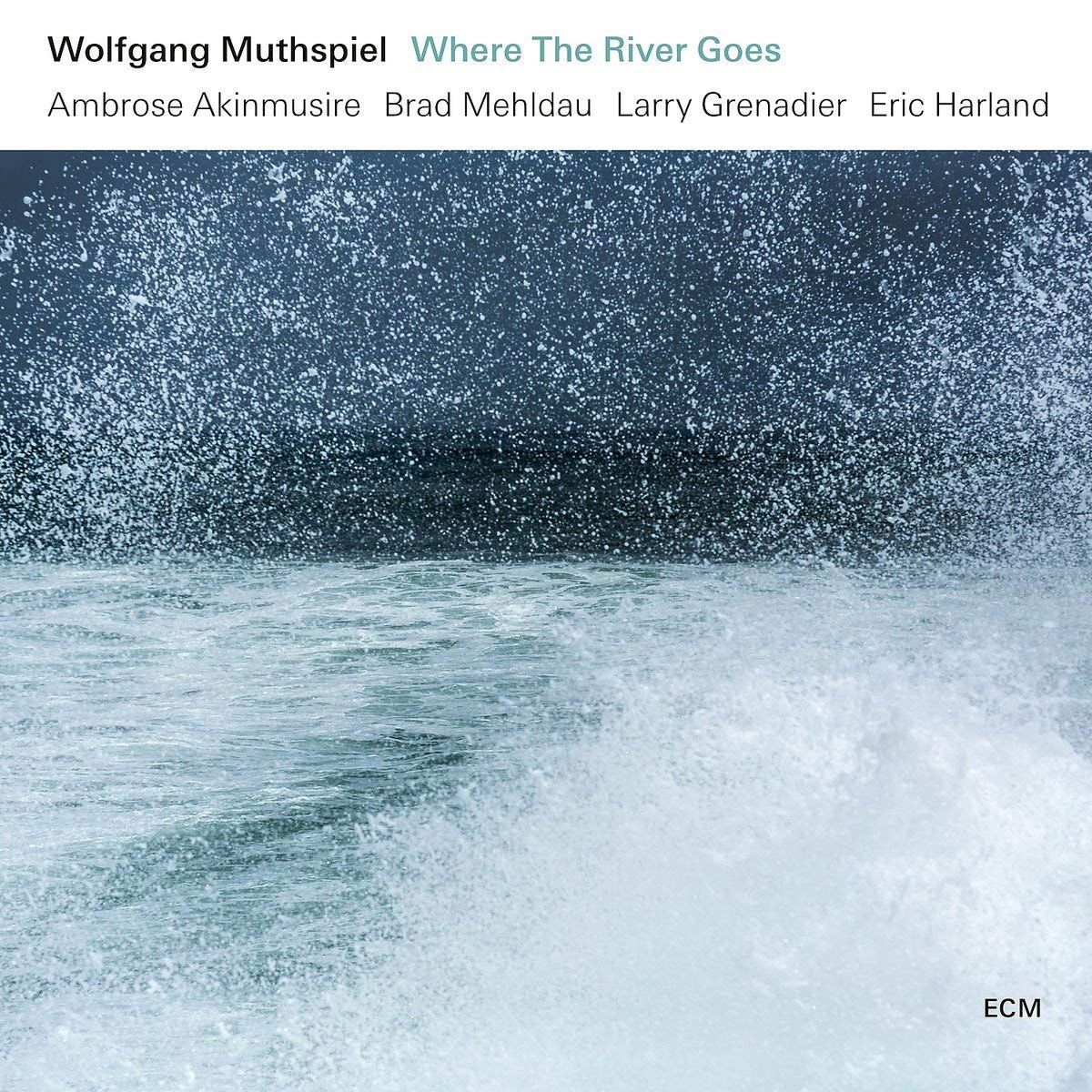Wolfgang Muthspiel Wolfgang Muthspiel. Where The River Goes (LP) wolfgang hutt walter womacka