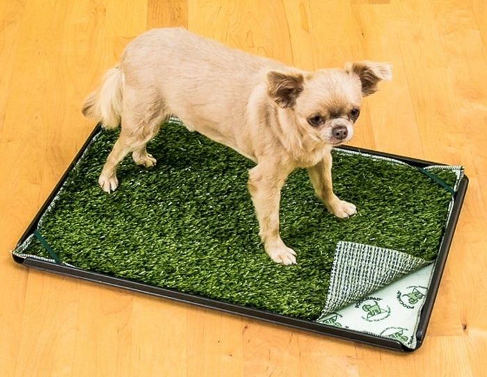 Коврик для собак Poochpad с искуственной травой и оградой PG16P24PSHS, 40 х 60 смPG16P24PSHSКоврик с зеленой травкой, впишется в любой интерьер и будет смотреться гораздо привлекательнее, чем просто пеленка с пятнами. Специально разработанная и запатентованная система создания многоразовой пеленки, быстро впитывает жидкость, не допускает просачивания, нейтрализует неприятные запахи, удерживает до 2.5 литров. Стирается в машинке при 40-60°С любым моющим средством. Для удобства использования на углах пеленки есть резинки для дополнительной фиксации и специальные кнопки для крепления двух и более пеленок между собой. Пеленки идеально подходят для использования в качестве туалета, при транспортировке животных, при содержании пожилых животных, при родах и для выращивания молодняка. Пеленка выдерживает до 300 стирок. Пластиковое ограждение, защитит покрытие вашего пола и стен от жидкости. Ограждение выполнено из тонкого полипропилена (имеет гладкую поверхность снаружи и ячеистую внутри). Благодаря легкому весу и устойчивой конструкции его можно переместить в любое место, которое облюбовал ваш питомец. Легко моется и складывается. Уникальным преимуществом системы является возможность увеличения до необходимых размеров и заменимость пришедших в негодность частей. В нашем интернет-магазине вы можете отдельно приобрести пеленку, покрытие в виде травки, поддон, или ограждение. С системой PoochPad туалет вашего питомца всегда будет выглядеть эстетично, а уборка станет легкой и комфортной.