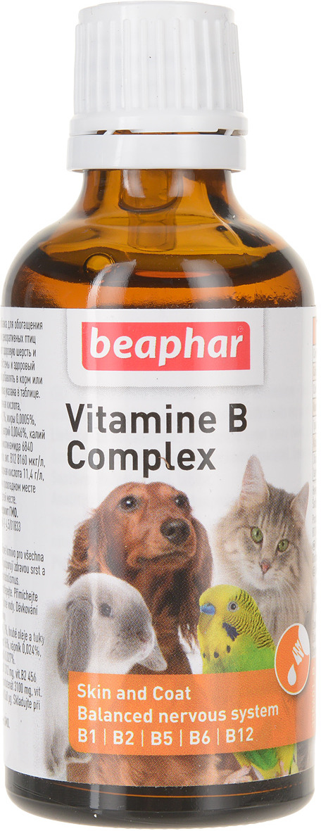 купить Комплекс витаминов группы В Beaphar, для кошек и собак, 50 мл по цене 410 рублей