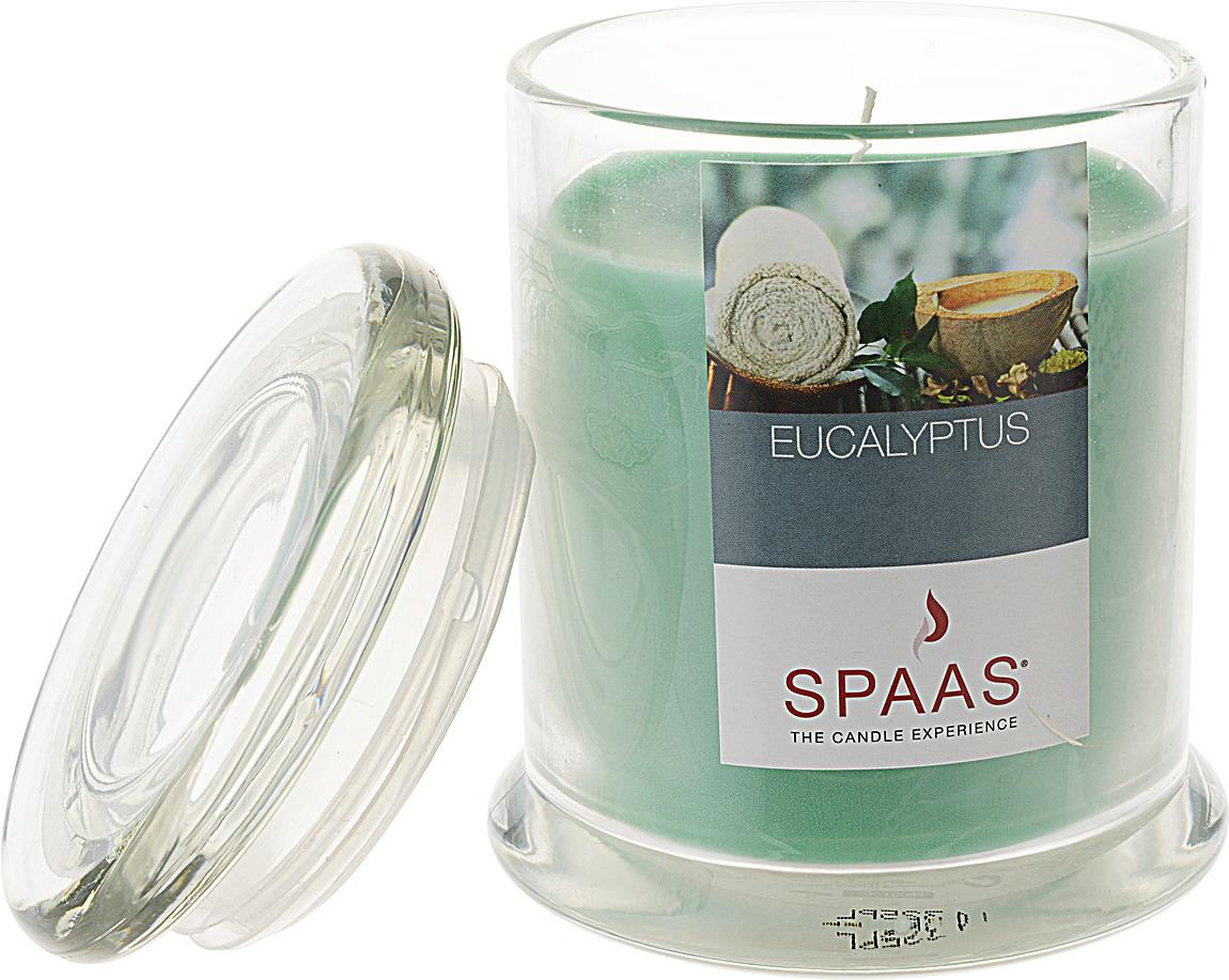 Свеча ароматизированная Spaas Арома Премиум. Эвкалипт, в стакане, 60 ч, 9 x 11 см свеча ароматизированная spaas ванильный пирог высота 15 см