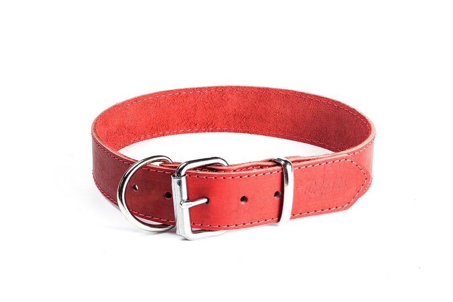 "Ошейник для собак Gripalle ""Дакс"", 70602, красный"