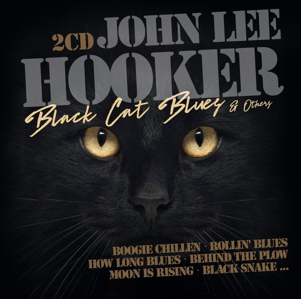 Джон Ли Хукер John Lee Hooker. Black Cat & Other Hits (2 CD) джон ли хукер john lee hooker blues is the healer 10 cd