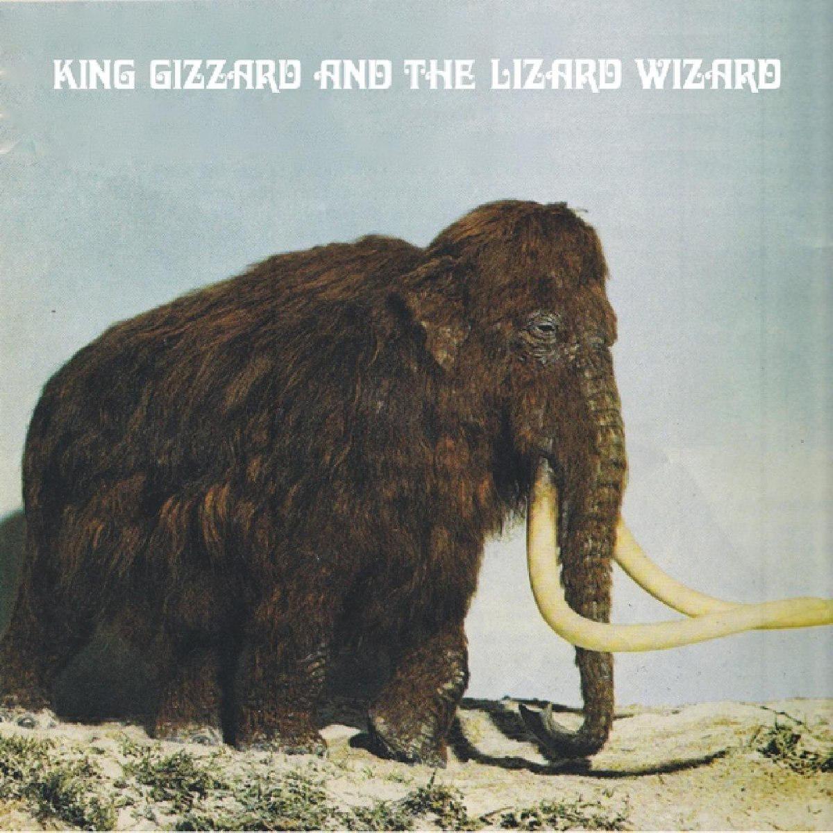 King Gizzard And The Lizard Wizard King Gizzard And The Lizard Wizard. Polygondwanaland. Fuzz Club Version автокресло gb idan lizard khaki