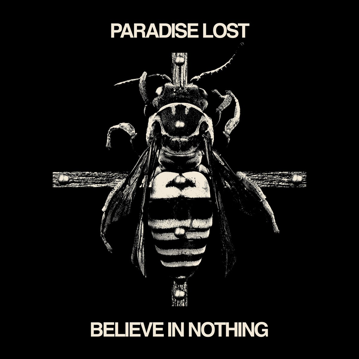 Paradise Lost Paradise Lost. Believe In Nothing (Remixed / Remastered) paradise lost paradise lost icon