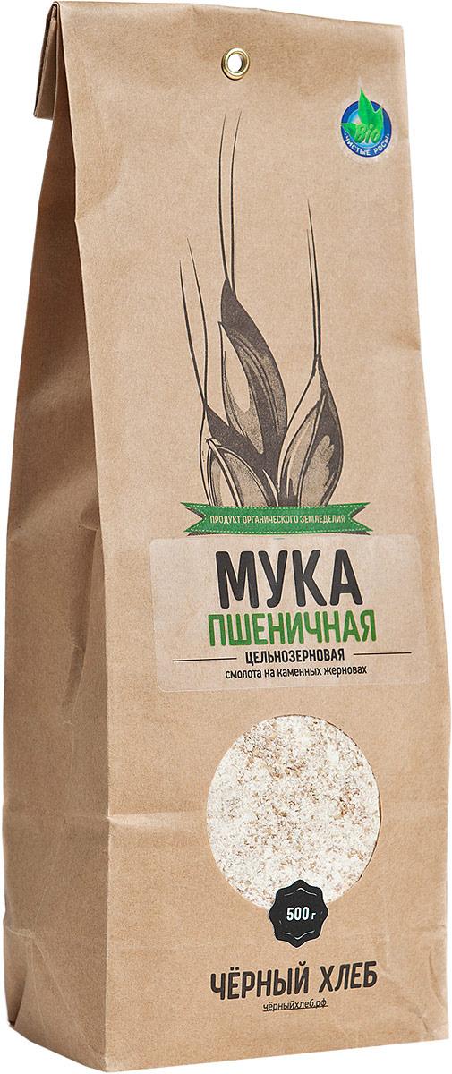 Пшеничная мука Черный хлеб, цельнозерновая, 500 г пудовъ мука пшеничная обойная цельнозерновая 1 кг