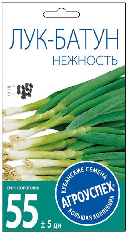 Семена Агроуспех Лук-батун Нежность, 17624, 1 г17624ЛУК-БАТУН НЕЖНОСТЬ Зеленый витамин С! Среднеспелый салатный зимостойкий сорт. Розетка листьев мощная, прямостоячая, высотой до 53 см. Листья зелёные, со слабым восковым налётом; длиной до 35 см, шириной 1,3 см. Масса одного растения 50-60 г. Вкус зелёных сочных листьев -нежный, слабоострый. Ценность сорта: высокая урожайность (4,2-4,6 кг/м2), долго сохраняет хозяйственную годность (листья долго не грубеют). Весной быстро отрастает и даёт раннюю, нежную, высоковитаминную зелень (особенно под плёночными укрытиями). При многолетней культуре за лето можно проводить 2-3 срезки зелёного пера. УСЛОВИЯ ВЫРАЩИВАНИЯ: семена высевают осенью или ранней весной на грядах, поперек которых делают бороздки через 1,5-2,0 см. Глубина заделки семян 1-2 см. При осеннем посеве ряды мульчируют перегноем или торфом. Предпочитает нейтральные, плодородные, легкие суглинки или суглинистые черноземы (кислых почв не переносит). Лучшие предшественники - огурец, капуста, томат, картофель, бобовые. Рекомендуем!
